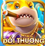 Tải bancaanxukoi.com apk, ios – Bắn cá koi đổi thưởng miễn phí icon